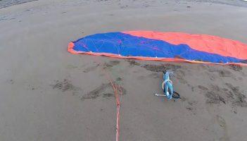 Pansh Genesis 6m Kite