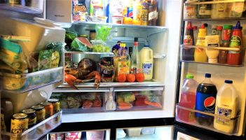 Samsung Family Hub 4 X French Door Flex Refrigerator
