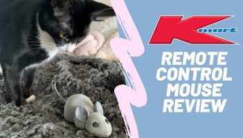 Anko Remote Controlled Mouse (Cat Toy)