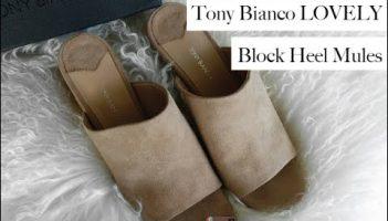 Tony Bianco Block Heel Mules – Review