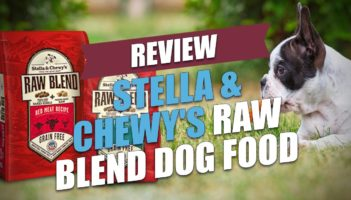 Stella & Chewy's Raw Blend Dog Food Review