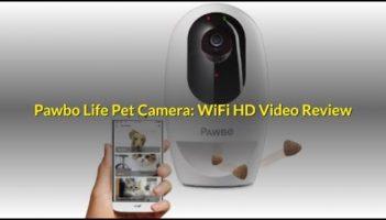 Pawbo Life Pet Camera : WiFi HD Video Review