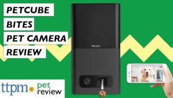 Petcube Bites Pet Camera Review