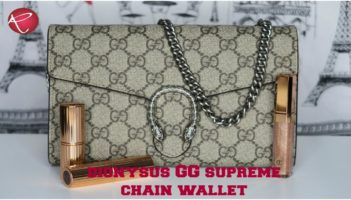 Gucci Dionysus GG Supreme Chain Wallet | WOC | Review